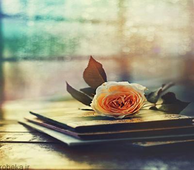 جملات زیبا و خواندنی کوتاه جملات زیبا و خواندنی کوتاه