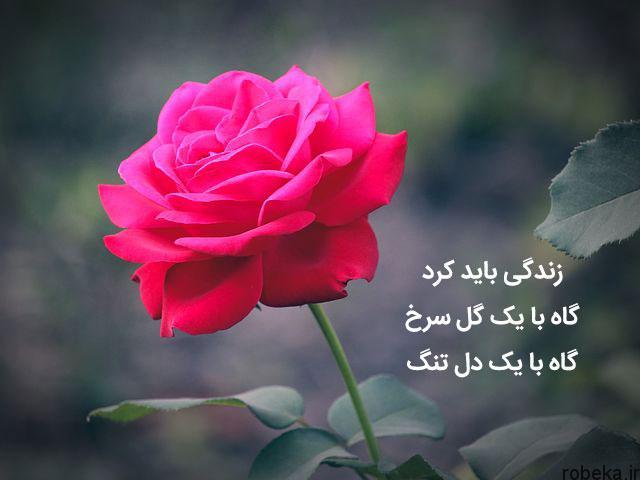 شعر عاشقانه نو 2 شعر عاشقانه نو  زیباترین اشعار نو کوتاه و بلند عاشقانه از شاعران معروف