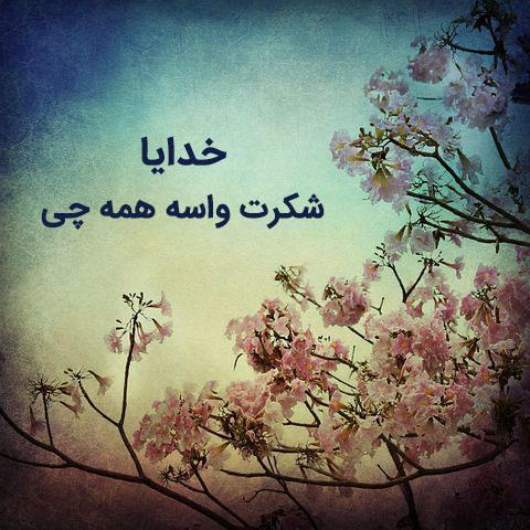 عکس نوشته خدایا شکرت 4 عکس نوشته خدایا شکرت که هوامو داری، بابت همه چیز و عشقم برای پروفایل