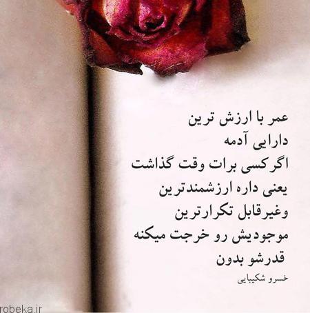 عکس نوشته 13 عکس نوشته الـهام بخـش برای زنـدگی (2)