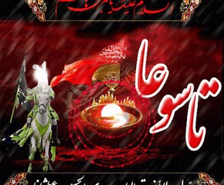 غ6898955569456989 تصاویر روز تاسوعای حسینی