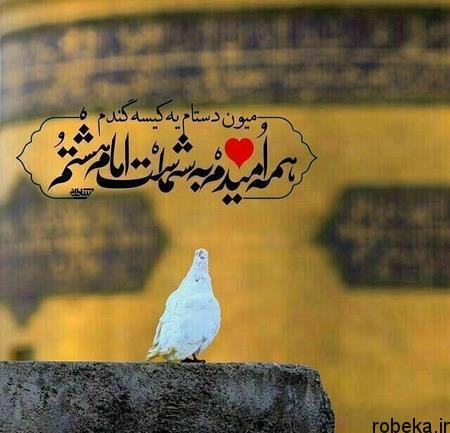پروفایل امام رضا 13 Copy عکس پروفایل امام رضا | عکس نوشته امام رضا دارم میام