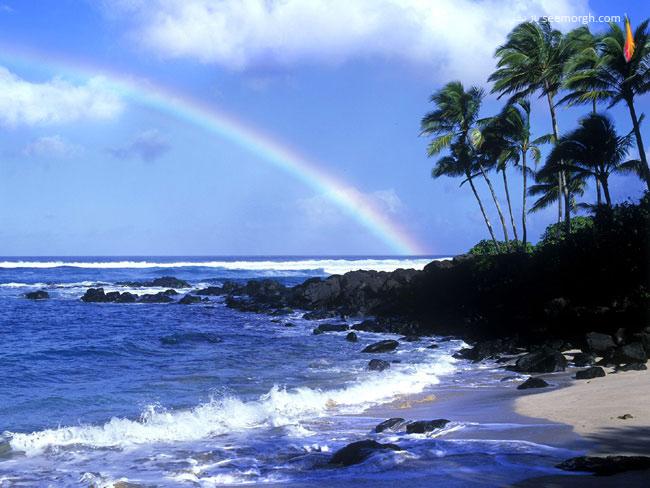 5af0c7d4b5948 7 عکسهایی از زیباترین سواحل جهان