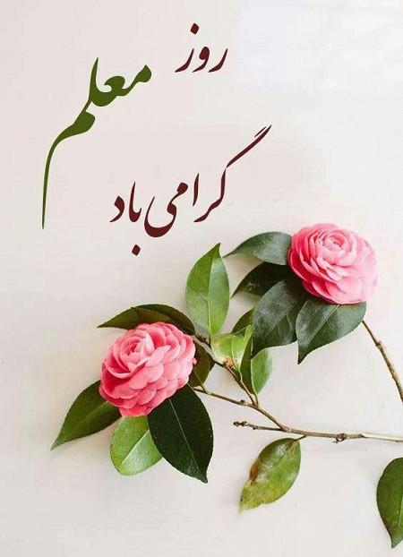 09t5765869769596 robeka.ir  متن تبریک روز معلم + کارت تبریک روز معلم