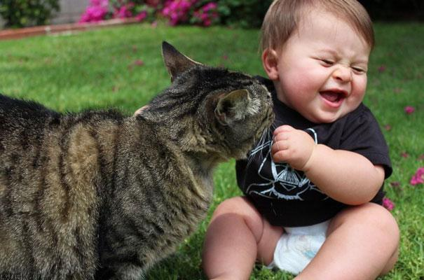 20175323141961112a عکس های دیدنی از رابطه احساسی گربه ها و کودکان