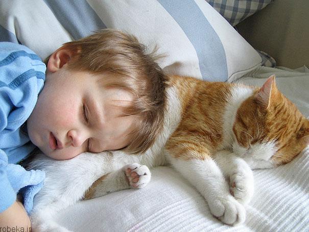 2017532314196117a عکس های دیدنی از رابطه احساسی گربه ها و کودکان