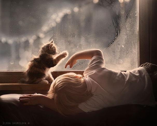 20175323141962010a عکس های دیدنی از رابطه احساسی گربه ها و کودکان