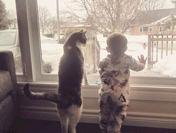 2017532314196282a عکس های دیدنی از رابطه احساسی گربه ها و کودکان