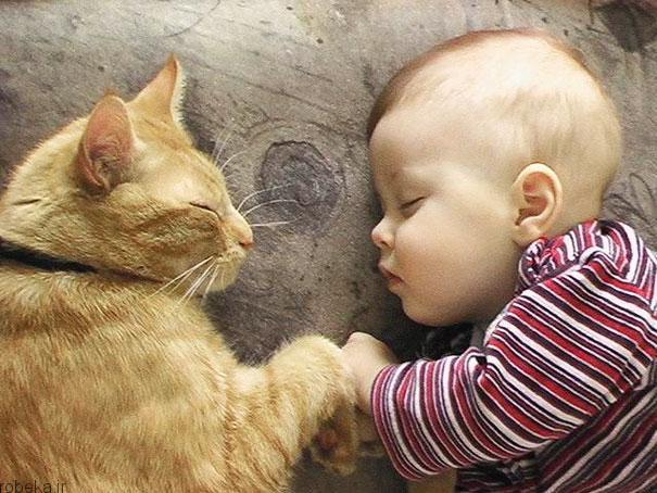 2017532314196596a عکس های دیدنی از رابطه احساسی گربه ها و کودکان