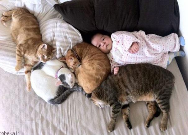 2017532314196868a عکس های دیدنی از رابطه احساسی گربه ها و کودکان