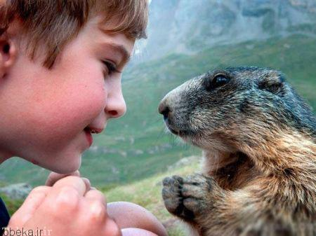20175323230711220a عکسهای عاشقانه از رابطه انسان با حیوانات