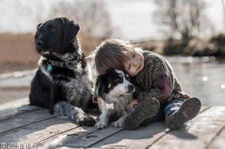 20175323230712816a عکسهای عاشقانه از رابطه انسان با حیوانات