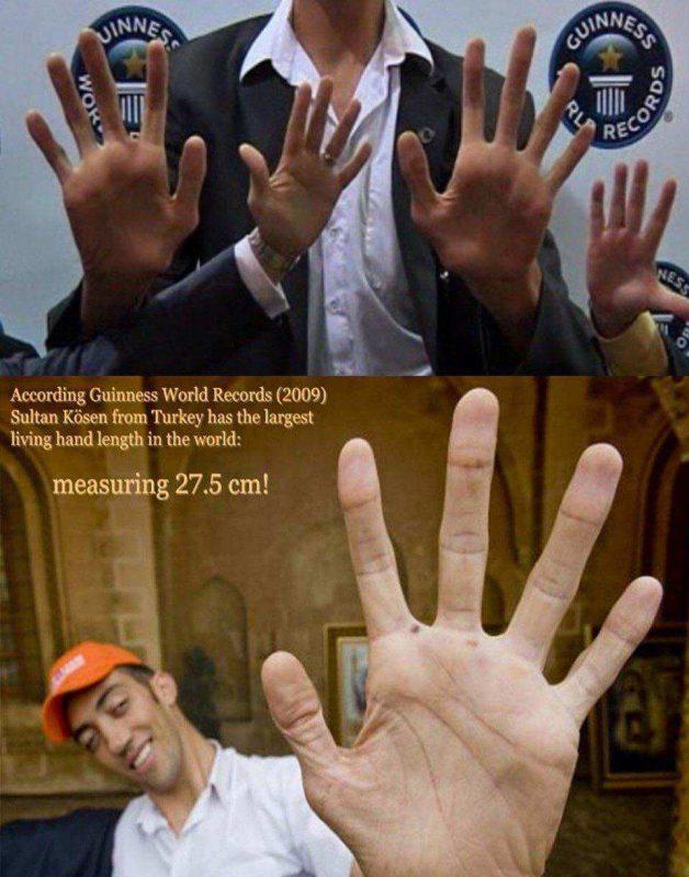 بزرگترین دست جهان 2 628x800 تصاویر جالب از بزرگترین دست جهان