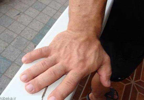 بزرگترین دست جهان تصاویر جالب از بزرگترین دست جهان