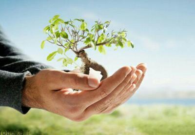 روز درختکاری اس ام اس روز درختکاری