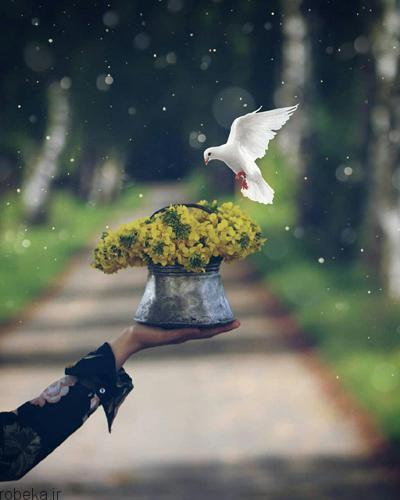 عکس های زیبا عکس های زیبا به همراه متن در مورد زندگی