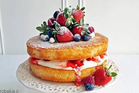 da a9 db 8c da a9  d8 a7 d8 b3 d9 81 d9 86 d8 ac db 8c 3 تزیین کیک اسفنجی با میوه