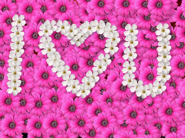 38 1 عکس های زیبای عاشقانه  جدید