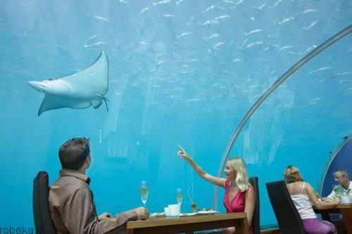 عكس هایی از رستورانی در زیر دریا