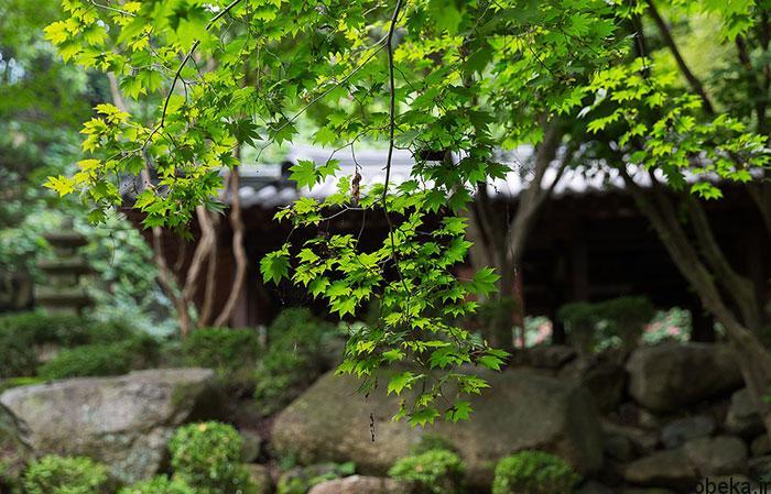 5b2678ae1cd5a south korea nature photos 9 عکس هایی از طبیعت زیبا و مکان های دیدنی کره جنوبی