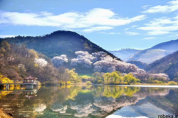 5b2678b287717 south korea nature photos 10 عکس هایی از طبیعت زیبا و مکان های دیدنی کره جنوبی