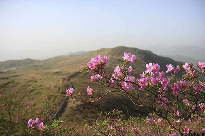 5b2678be3c3b2 south korea nature photos 13 عکس هایی از طبیعت زیبا و مکان های دیدنی کره جنوبی
