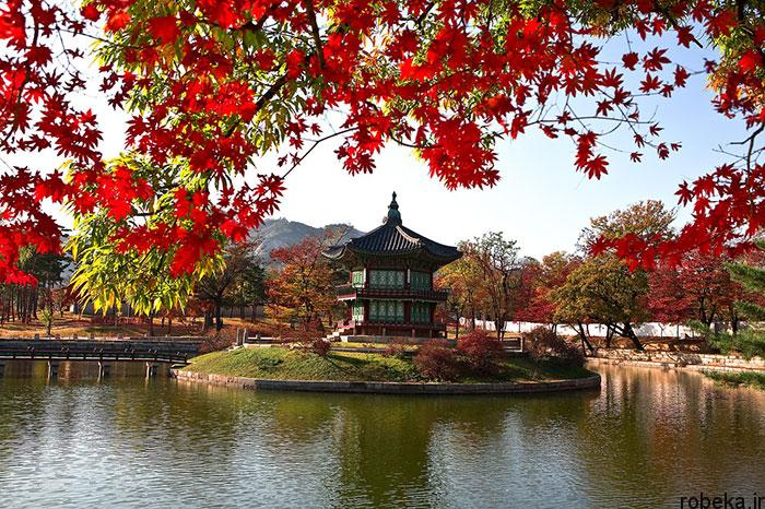 5b2678d25860e south korea nature photos 18 عکس هایی از طبیعت زیبا و مکان های دیدنی کره جنوبی