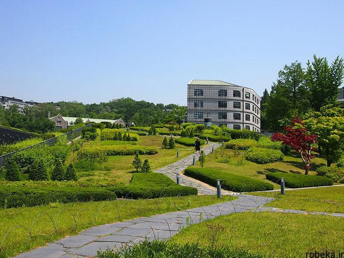 5b2678e3816a3 south korea nature photos 22 عکس هایی از طبیعت زیبا و مکان های دیدنی کره جنوبی