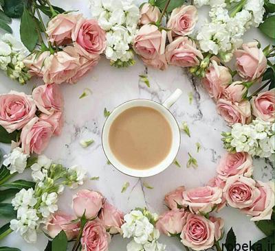 5b26cee65b04e life existence122 1 متن و جملات زیبا با موضوع زندگی زیباست