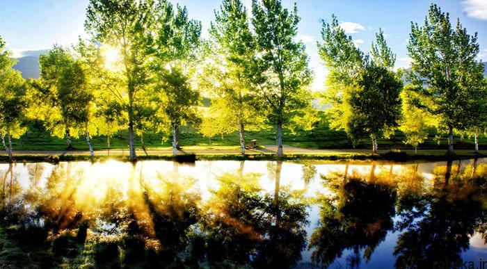 5b282c2b2f8c0 beautiful relax nature photos 4 3 عکس های آرامش بخش و آرامش دهنده از طبیعت