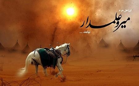 878999767554657687980999877665567687909876ف567868979 تصاویر روز تاسوعای حسینی