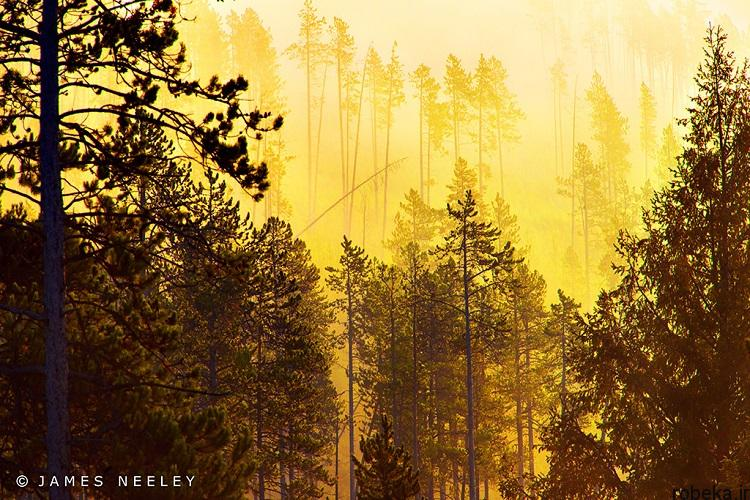 National Park 10 20 عکس دیدنی از پارک های ملی با زمین های رنگین کمانی در ایالات متحده آمریکا