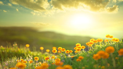 aranehmokram poems1 1 چند شعر زیبا و عاشقانه از ترانه مکرم
