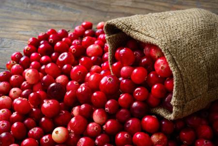cranberry1 properties2 آشنایی با خواص کرن بری