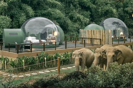 %name حباب های جنگلی جاذبه گردشگری تایلند