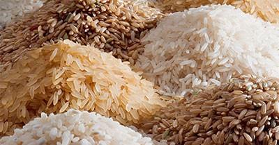 خاصیت برنج,فواید برنج