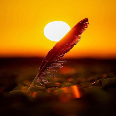 finaldays shahrivar1 1 1 متن و جملات زیبا با موضوع زندگی زیباست (9)
