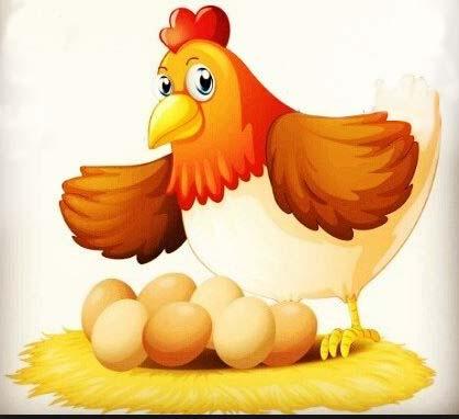 introduction play chicken22 معرفی بازی یک مرغ دارم