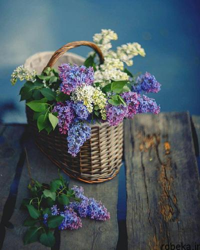 life beautiful121 1 متن ، دلنوشته و جملات زیبا با موضوع زندگی زیباست