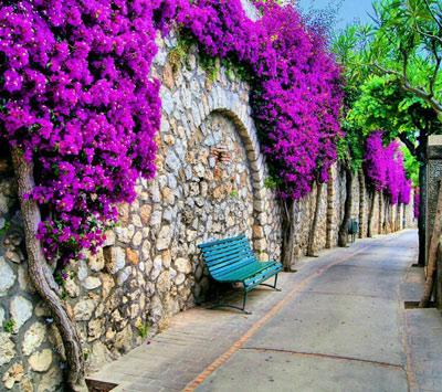 life philosophical125 1 متن و جملات زيبا با موضوع زندگي زيباست (4)