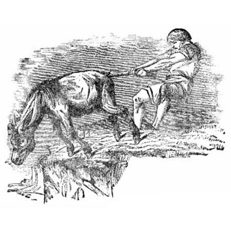 old anecdote interest - حکایت خر در گل مانده
