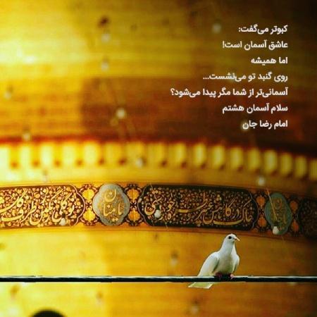 photo imamreza11 عکس پروفایل میلاد امام رضا علیه السلام