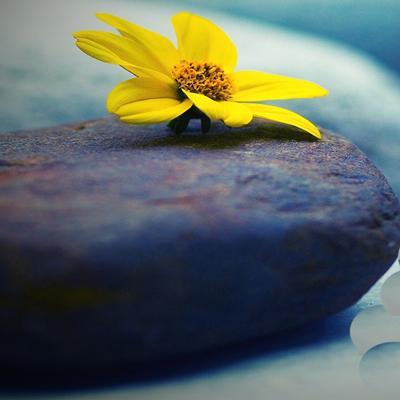 poem amirarjini1 1 شعر زيباي سنگ صبور از امير ارجيني