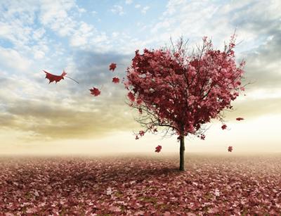 romantic beautiful52 1 اس ام اس های عاشقانه و زیبا (11)