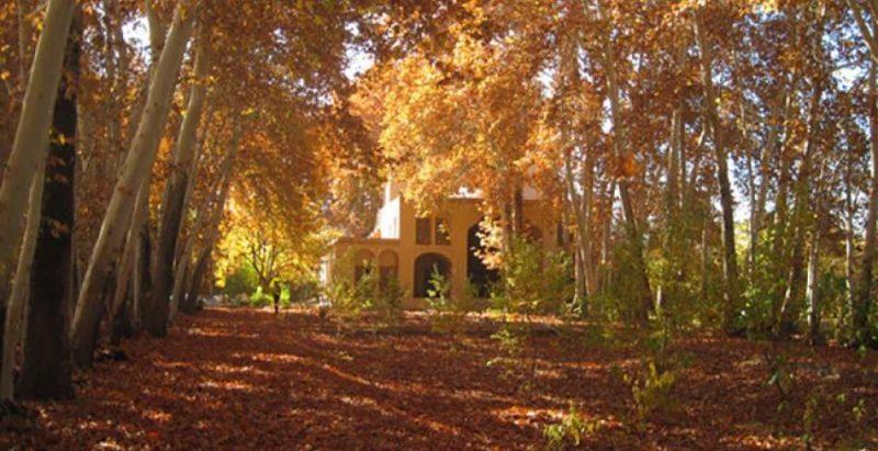 rybnm8yhg5fgtr446nym 800x411 پاییز کجا بریم سفر که خوش بگذره؟