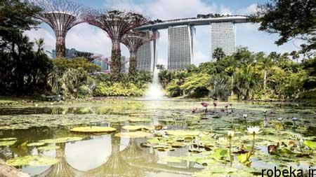 sights4 singapore 2 جاذبه های گردشگری سنگاپور